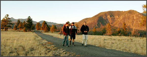 Back2Basics Outdoor Adventure Therapy