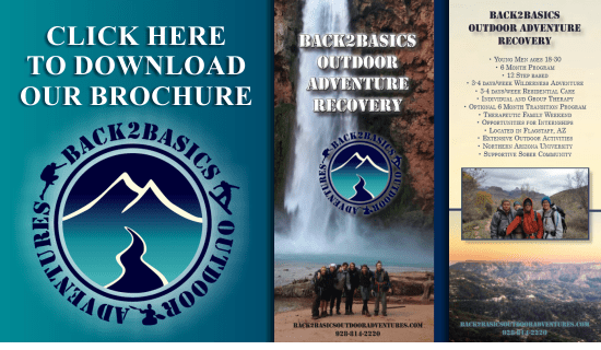 Back 2 Basics Outdoor Adventure Therapy Brochure