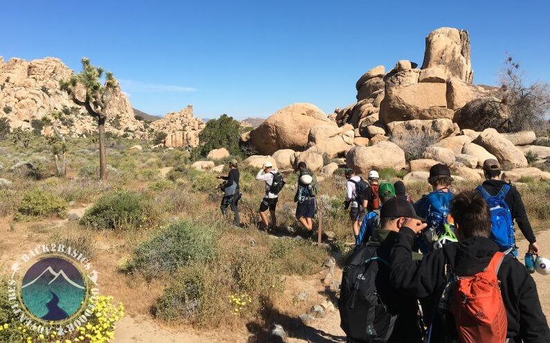 Young Men Hiking Joshua Tree Park