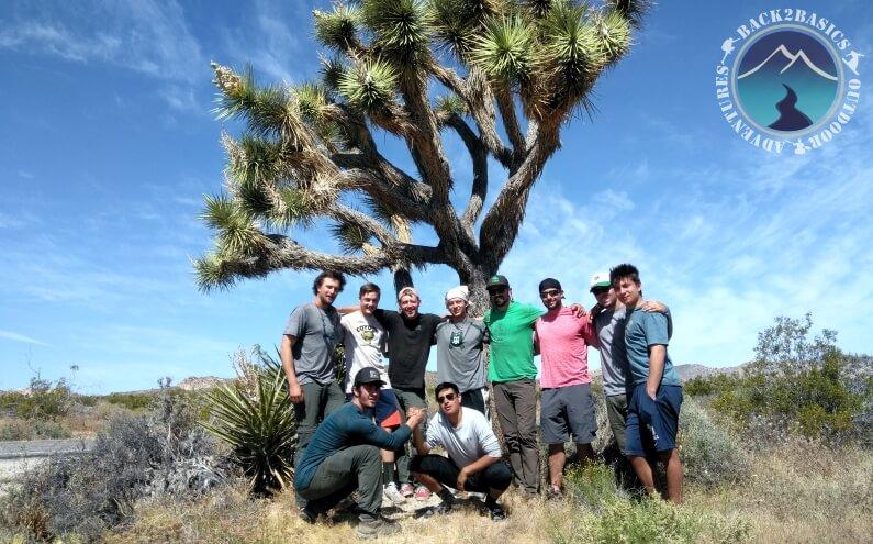 Young Men under Joshua Tree